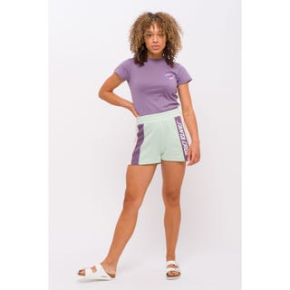 Santa Cruz Frame Shorts Multi